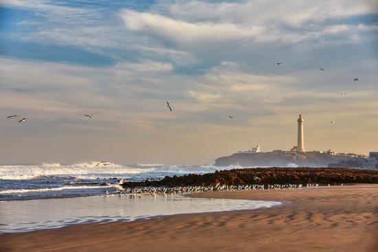 Hotels Hotels Casablanca : Four Seasons ouvre son 2ème hôtel au Maroc